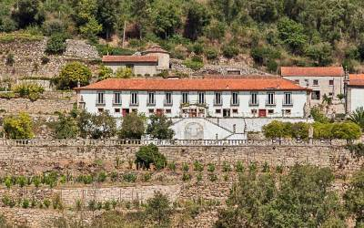 From the Vineyards to the Sea – the Douro River