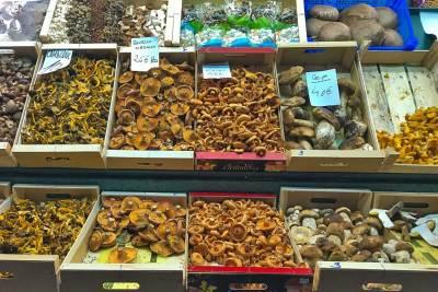 Barcelona-Boqueria mushroom.