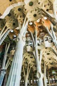 The  breathtaking flower vaults of  La Sagrada Familia.