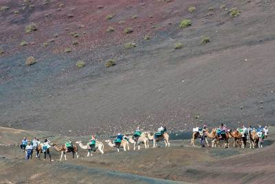 Some visitors prefer to take a short dromedary-back visit of the Montañas del Fuego (Fire Mountains).