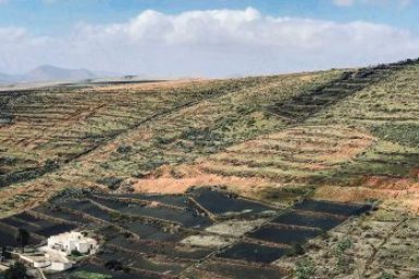 Lanazarote-agricultural interior.