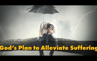 God's Plan to Alleviate Suffering