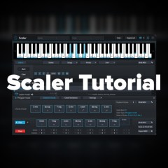 Scaler Tutorial: Using the Chord / Scale Detect Feature & Generating a New Chord Progression
