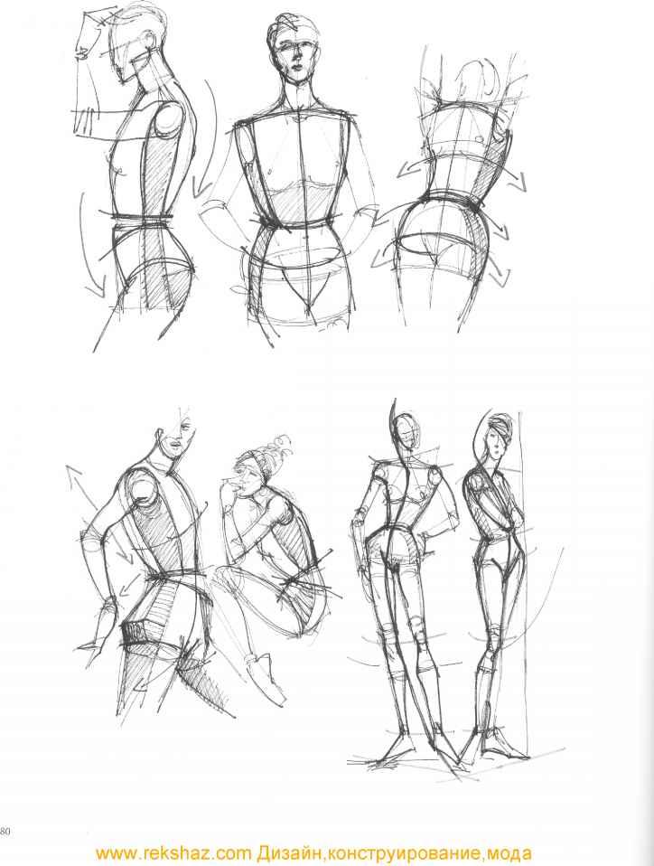 Human Anatomy Upper Torso / Character Creator 3 Online