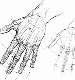 hand reach [ 1118 x 952 Pixel ]