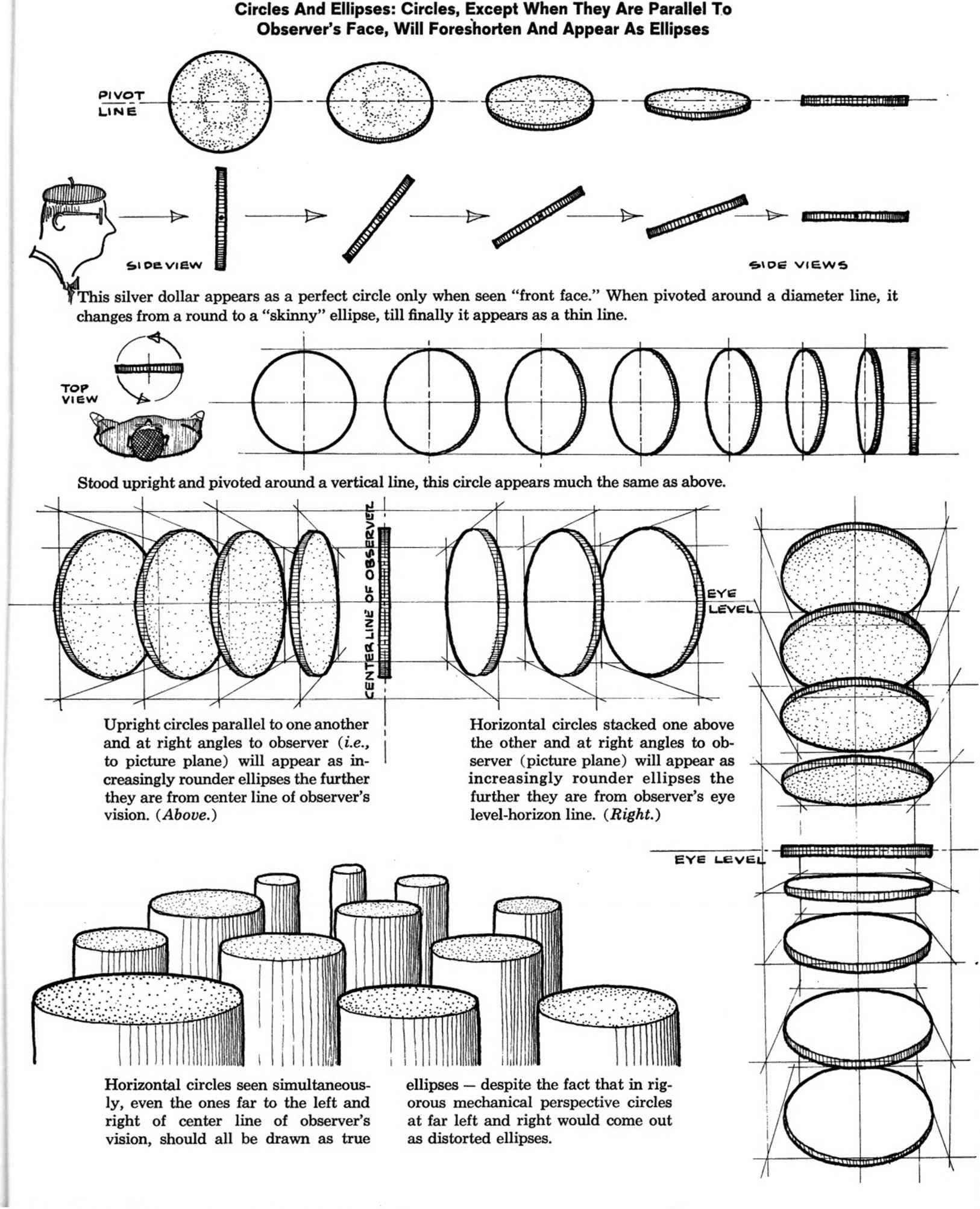 Foreshortened Cylinder