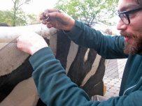 Upholstering Seeded Soil Onto Sofas