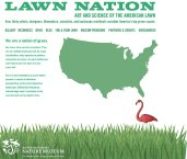 Lawn Nation web graphic