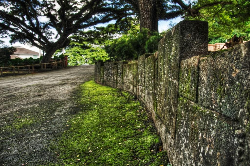 Wall, Latte Stone Park