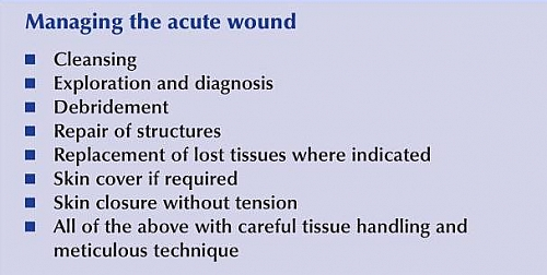 Principles of Acute wound treatment