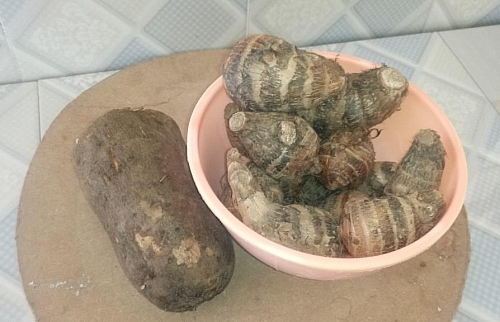 I used edible cocoyam and not the one for preparing bitter leaf soup