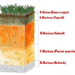 Horizon Diagram Soil Formation Solar Hot Water System Wiring Layers Of Definition Description With Profile Descriptions