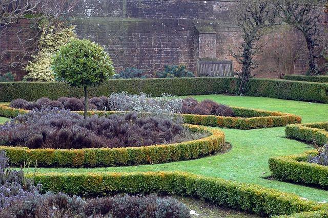 jardin-hiver