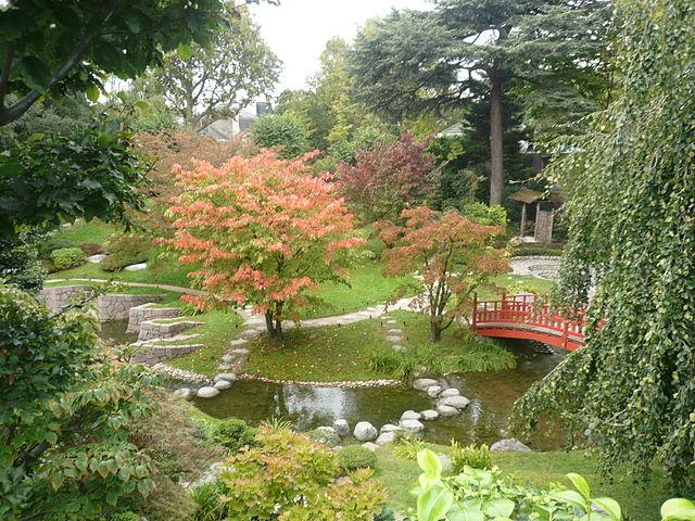 jardin japonais moderne