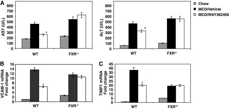 Farnesoid X receptor agonist WAY-362450 attenuates liver