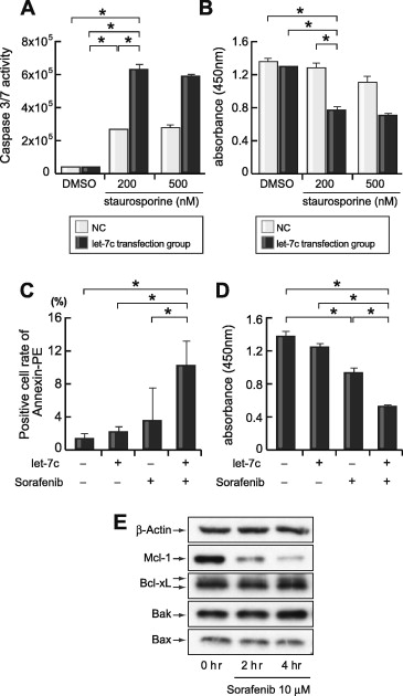 The let-7 family of microRNAs inhibits Bcl-xL expression