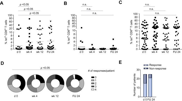 Restoration of HCV-specific CD8+ T cell function by