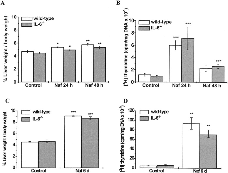 Normal pharmacologically-induced, but decreased regenerative liver growth in interleukin-6