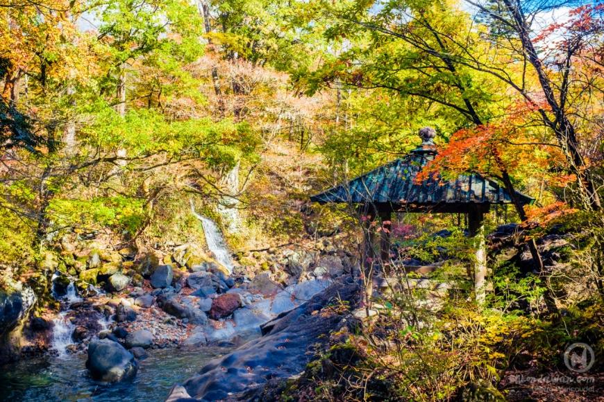 Un automne au Japon  nature temples et momiji   Journal du Japon
