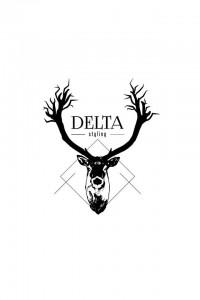Delta Styling logo