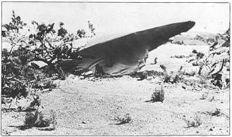 ovni roswell crash 1947