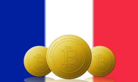 Drapeau France Crypto