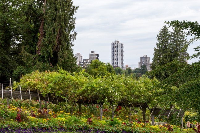 Stanley Park_Vancouver
