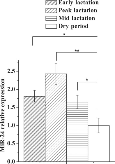 MicroRNA-24 can control triacylglycerol synthesis in goat