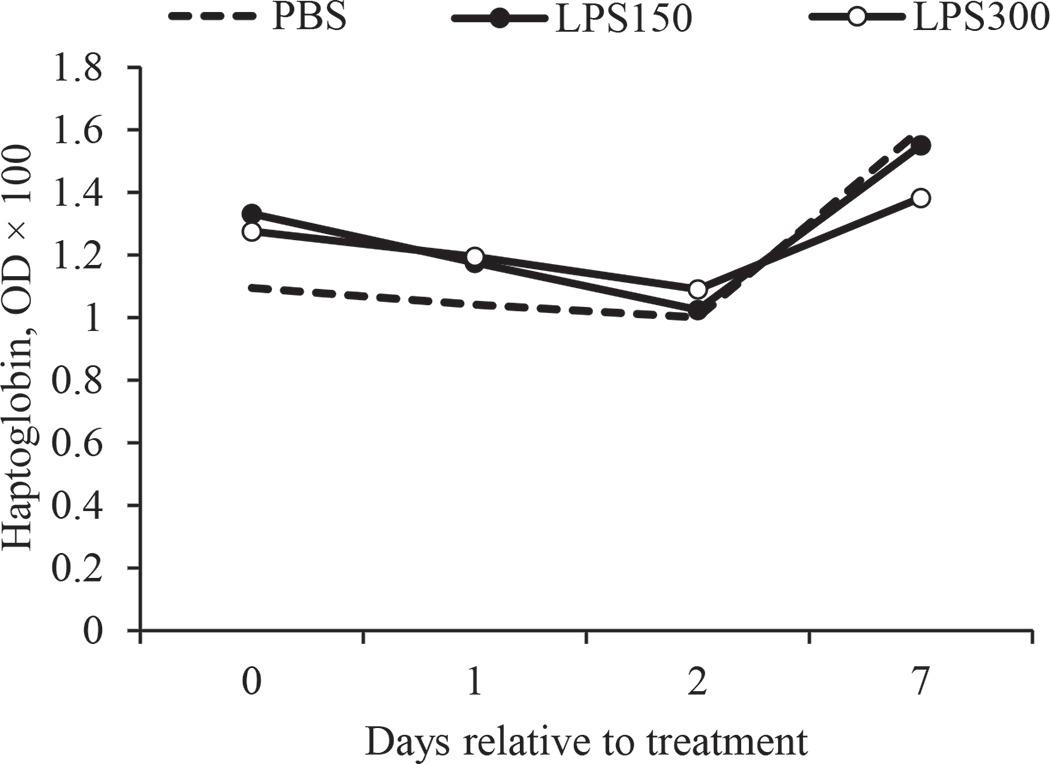 Effects of intrauterine infusion of Escherichia coli