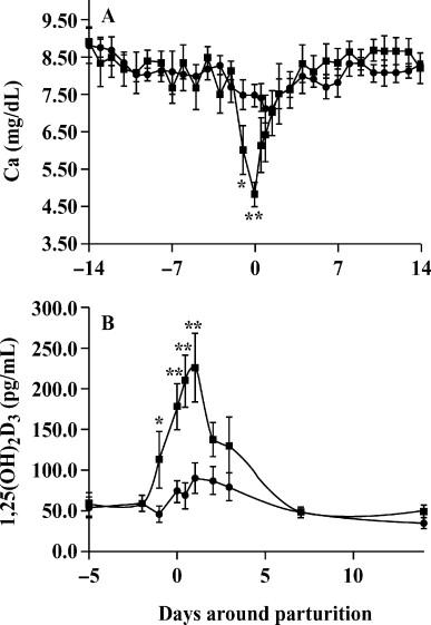 Short Communication: Ca2+-Adenosine Triphosphatase Protein