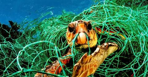 What Is Ghost Fishing