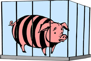 pigprison.jpg