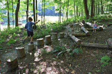 Forest Playground
