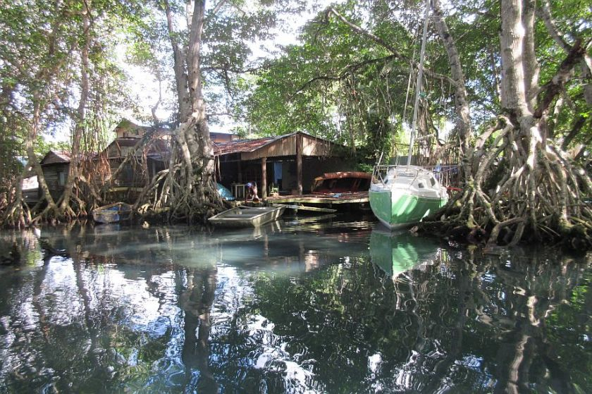 excursion to Mangrove Swamp