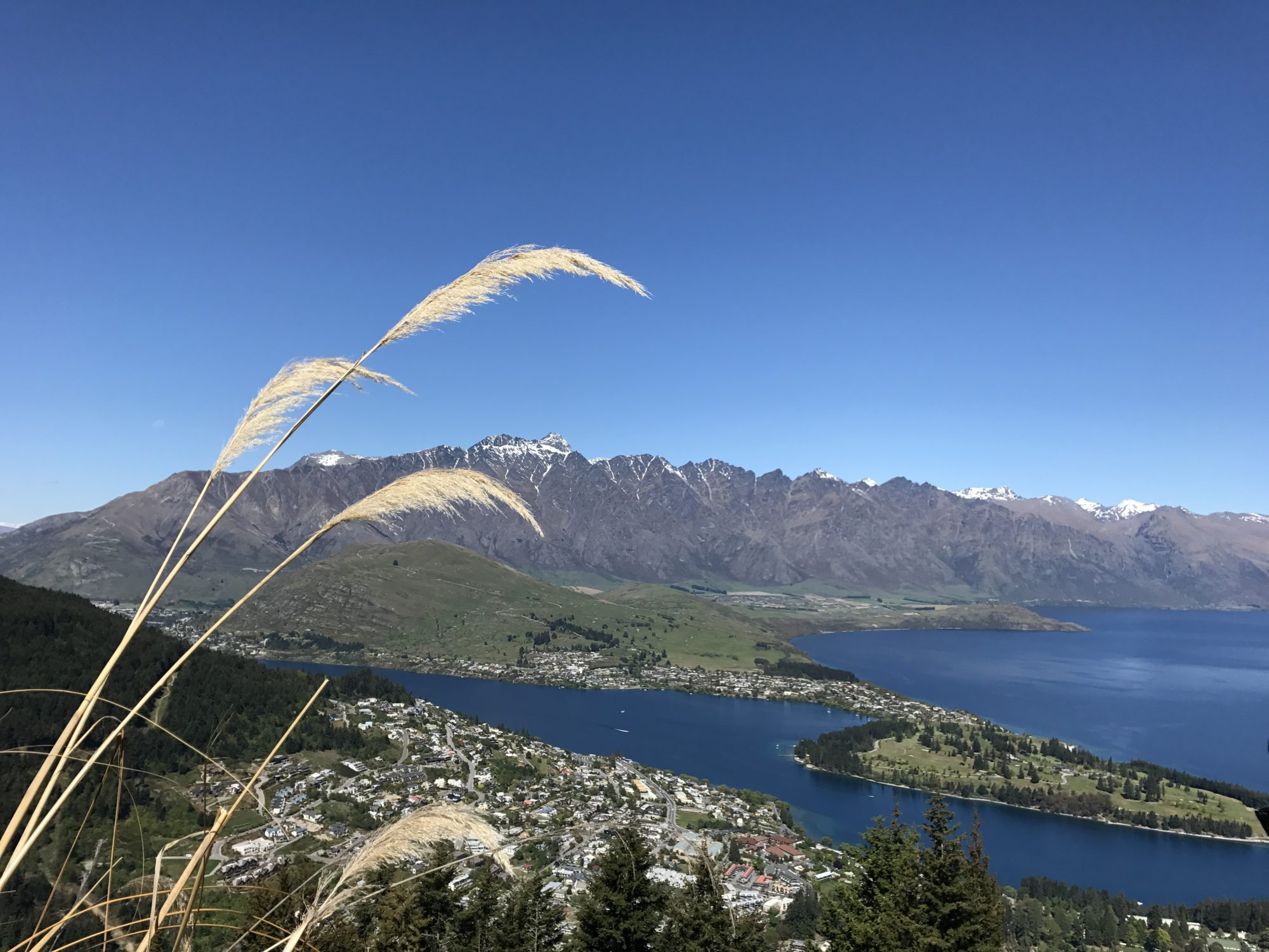 Queenstown Journeys of C