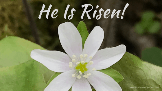 Happy Easter! He Is Risen!