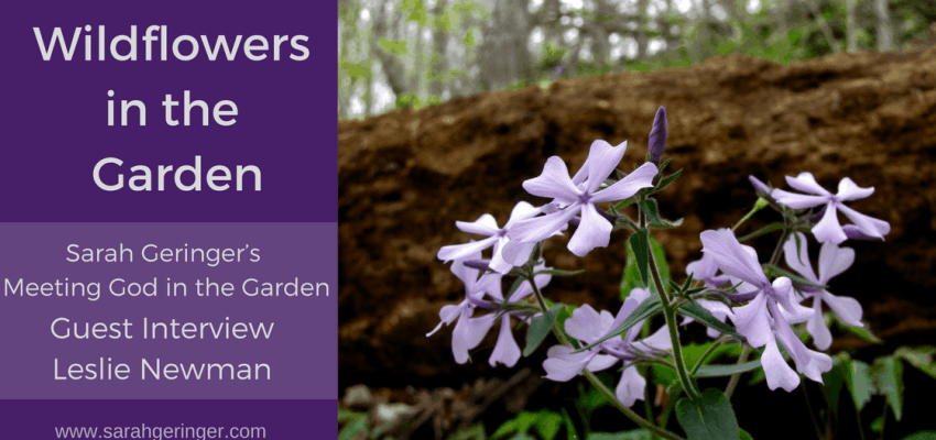 oin me as I take a walk with my friend, Sarah, in the garden. We'll talk about spiritual lessons to be learned from the wildflowers.