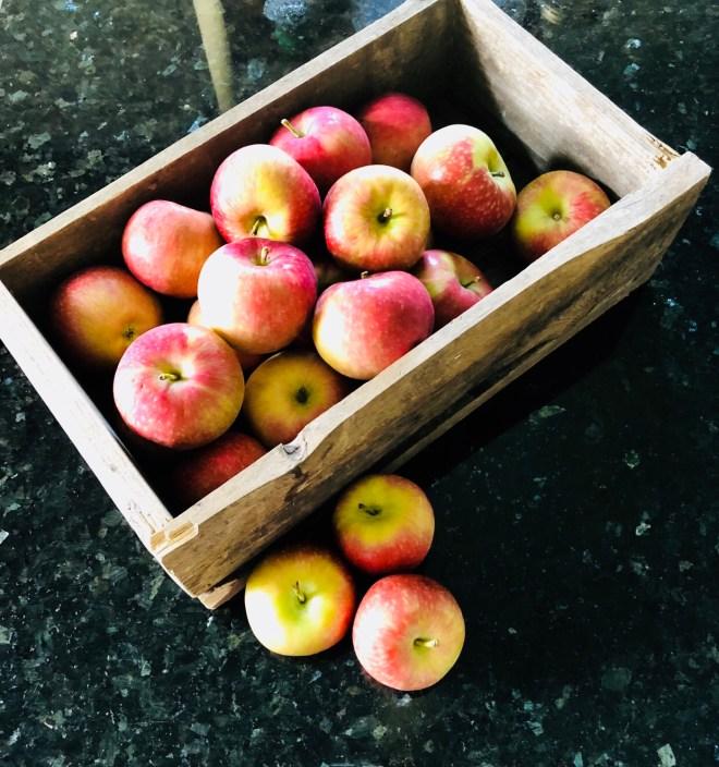 Two Raw Apple Treats