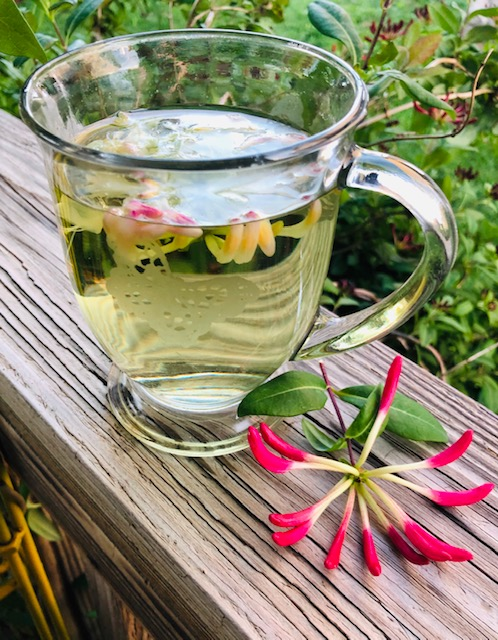 Health Benefits of Honeysuckle Tea