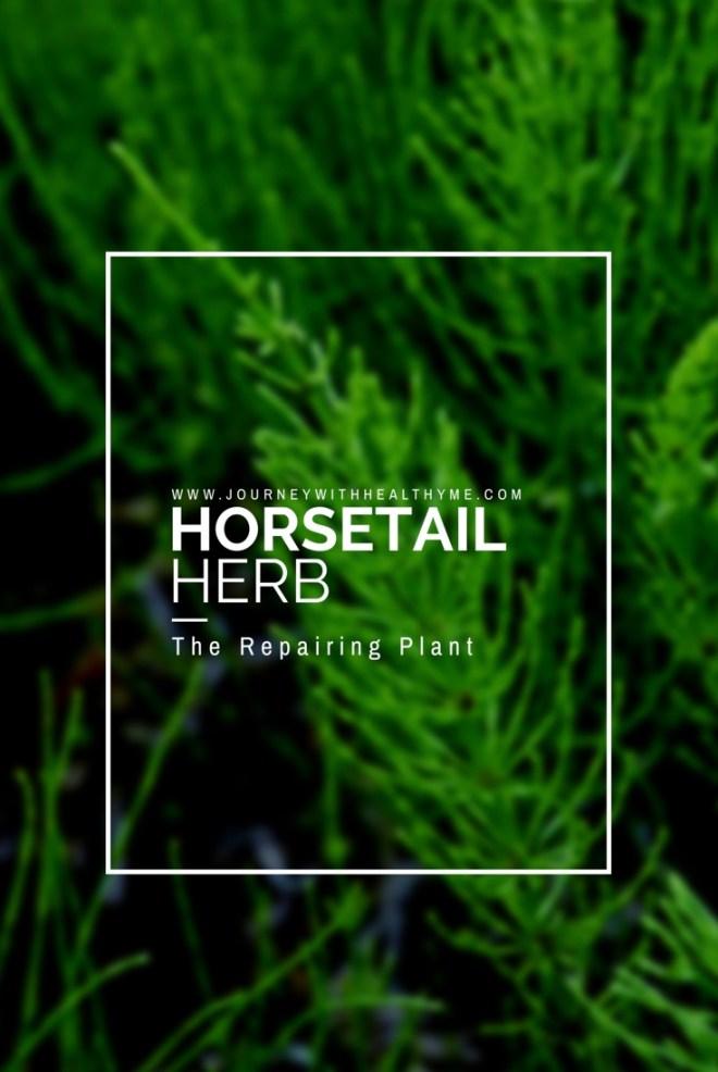 Horsetail Herb Title Meme