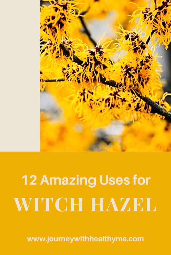 12 Amazing Uses for Witch Hazel title meme
