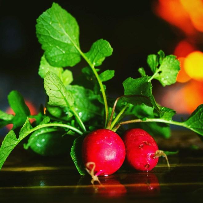 Healthiest Root Vegetables radishes