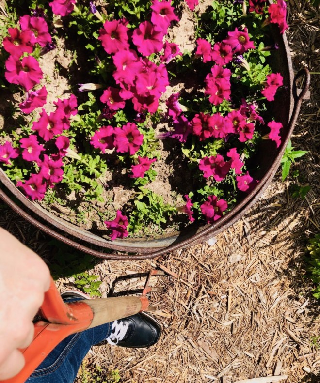 Ten Benefits of Meditation gardening
