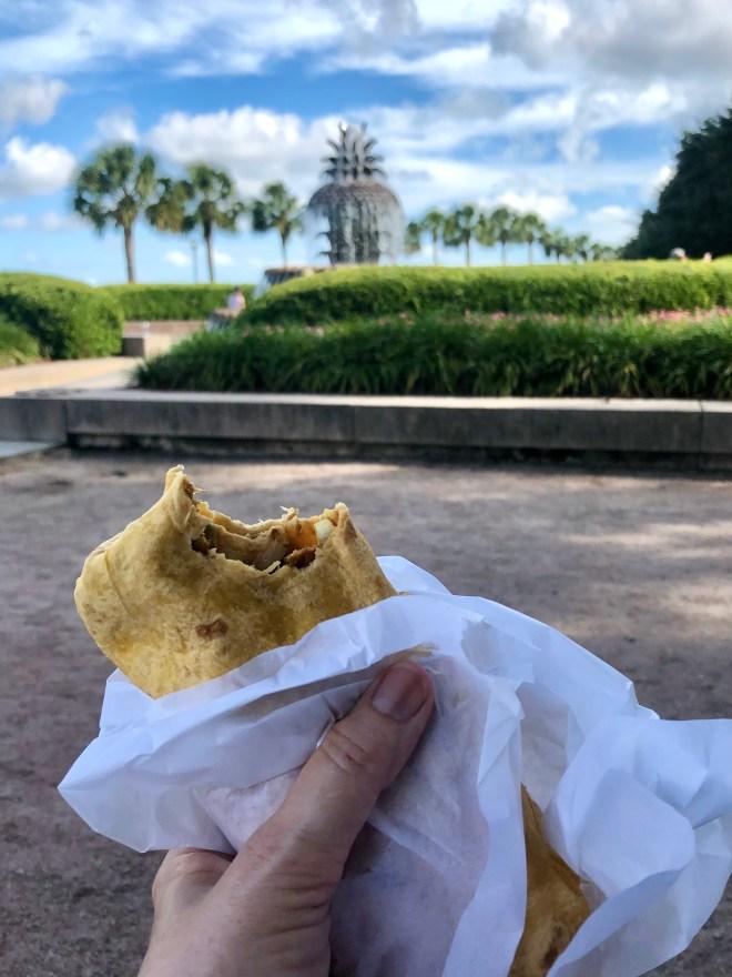 Vegan Eats in Charleston brown dog deli wrap