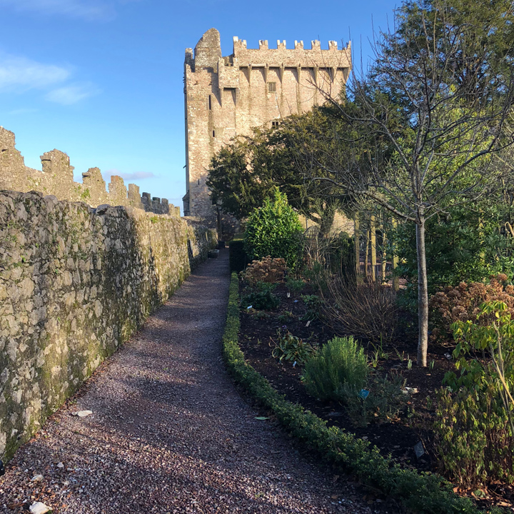 What Is the Blarney Stone