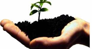 Sustentabilidade - Campanha da Fraternidade 2011