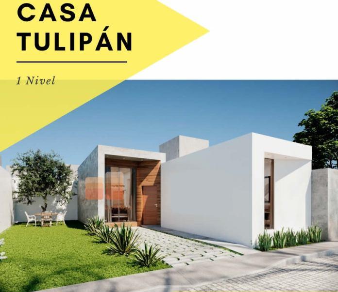 Casa Tulipan