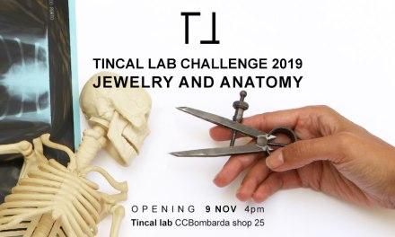 Participacion argentina en el desafío Tincal Lab (Portugal)