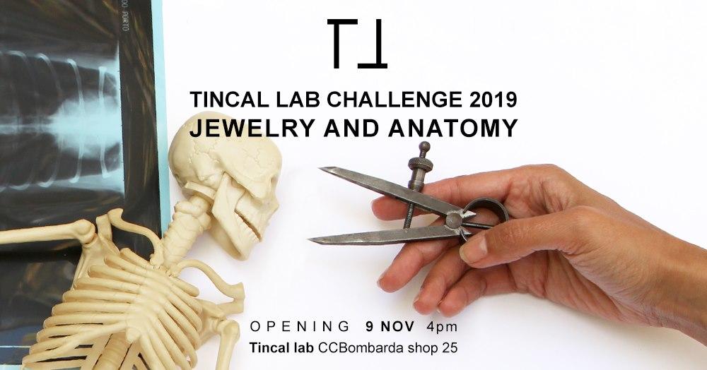 Tincal Lab 2019