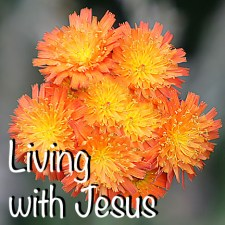 Living with Jesus ZV7L0238